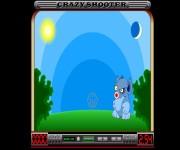 Crazy Shooter gra online