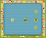 Turtle Pool gra online